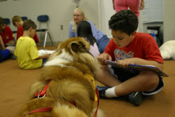 therapy dogs in action with kids